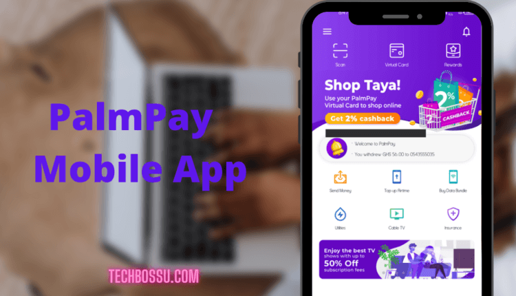 Ways To Get Virtual Credit Card In Ghana and Nigeria - PalmPay Image